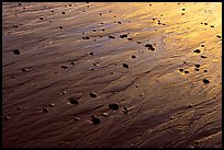 Reflections in wet sand at sunset, Half-moon bay. Pacific Rim National Park, Vancouver Island, British Columbia, Canada