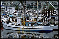 Fishing boat in harbour, Uclulet. Vancouver Island, British Columbia, Canada ( color)