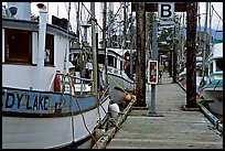 Fishing boats docked, Uclulet. Vancouver Island, British Columbia, Canada ( color)