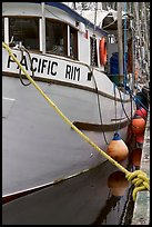Commercial fishing boat, Uclulet. Vancouver Island, British Columbia, Canada ( color)
