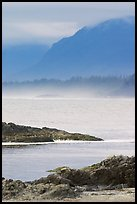 Ocean and coastal range. Pacific Rim National Park, Vancouver Island, British Columbia, Canada ( color)
