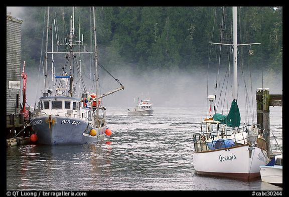 Yacht and fishing boat, Tofino. Vancouver Island, British Columbia, Canada (color)