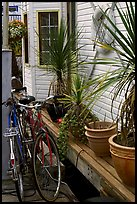 Bicycles, potted plants, and houseboat. Victoria, British Columbia, Canada