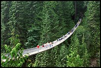 Capilano suspension bridge. Vancouver, British Columbia, Canada