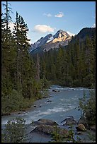 Yoho River, trees, and Cathedral Crags, late afternoon. Yoho National Park, Canadian Rockies, British Columbia, Canada ( color)