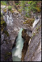 Natural bridge in Marble Canyon. Kootenay National Park, Canadian Rockies, British Columbia, Canada