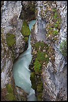 Limestone walls carved by Tokkum Creek, Marble Canyon. Kootenay National Park, Canadian Rockies, British Columbia, Canada