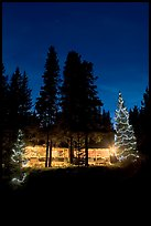 Cabin and illuminated Christmas trees at night. Kootenay National Park, Canadian Rockies, British Columbia, Canada