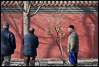 Bird market along red wall. Beijing, China ( color)