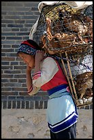 Woman carrying a load of chicken cages on forehead. Shaping, Yunnan, China (color)