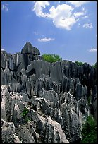 Maze of grey limestone pinnacles and peaks of the Stone Forst. Shilin, Yunnan, China