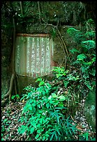 Chinese inscription in stone in the gardens of Dafo Si. Leshan, Sichuan, China ( color)