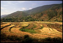 Fields on the road between Lijiang and Panzhihua.  ( color)