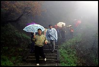 Pilgrims with umbrellas descend some of the tens of thousands of stairs. Emei Shan, Sichuan, China ( color)