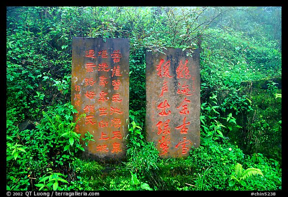 Stone tablets with Chinese scripture. Emei Shan, Sichuan, China (color)