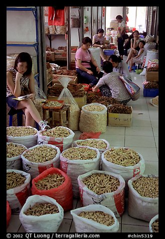 Woman selling dried food items inside the Qingping market. Guangzhou, Guangdong, China (color)