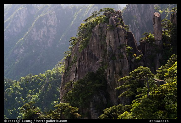 Granite peaks with pines. Huangshan Mountain, China (color)