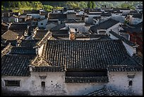 Tile rooftops. Xidi Village, Anhui, China ( color)