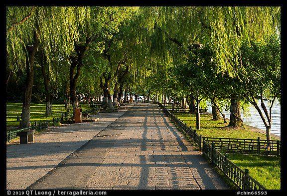 Willow-lined walkway, West Lake. Hangzhou, China (color)