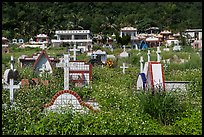 Christian cemetery, Chongde. Taiwan ( color)