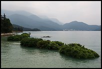 Floating gardens and misty mountains. Sun Moon Lake, Taiwan (color)