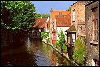 Canal lined with houses and trees. Bruges, Belgium ( color)