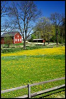 Pasture and farm. Gotaland, Sweden ( color)