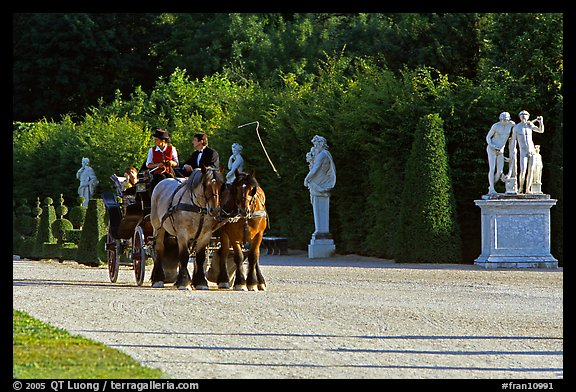 Horse carriage in an alley of the Versailles palace gardens. France (color)