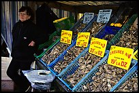 Stand with a variety of oysters in Cancale. Brittany, France