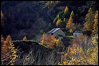 Barns in Autumn. Maritime Alps, France (color)