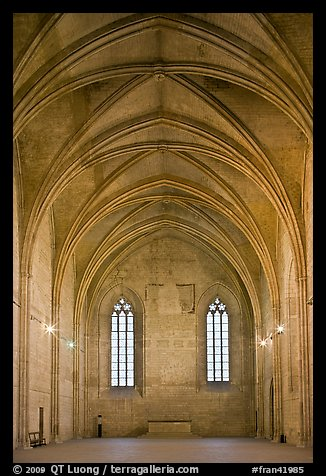 Chapel, Palace of the Popes. Avignon, Provence, France