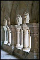 Detail of columns, the cloister, Fontenay Abbey. Burgundy, France