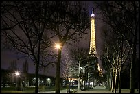 Trees in Champs de Mars and Eiffel Tower at night. Paris, France