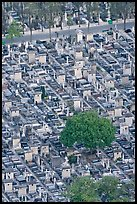 Tombs in Cimetierre du Montparnasse seen from above. Paris, France