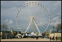La grande roue from the Tuileries Garden. Paris, France ( color)