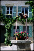 Flowers on a well, old  Vezelay. Burgundy, France (color)