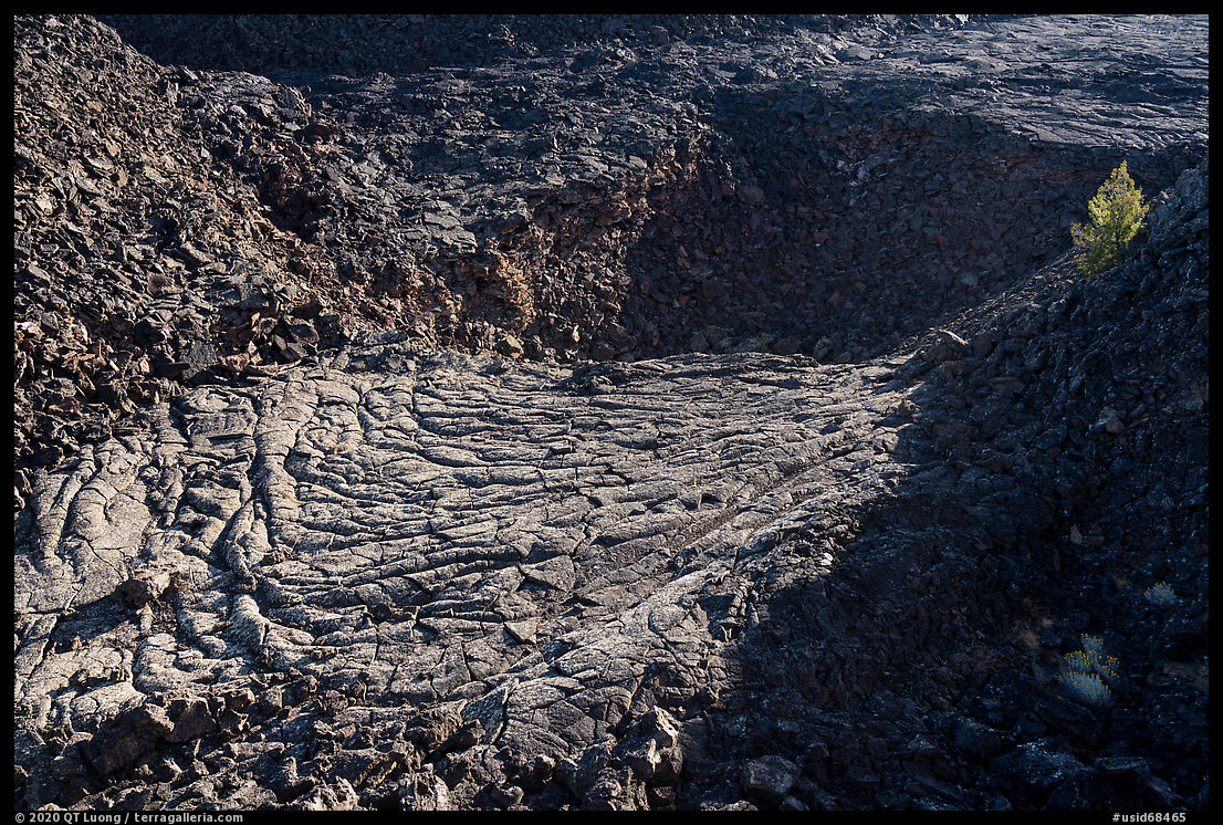 Former lava lake and tree, Pilar Butte. Craters of the Moon National Monument and Preserve, Idaho, USA