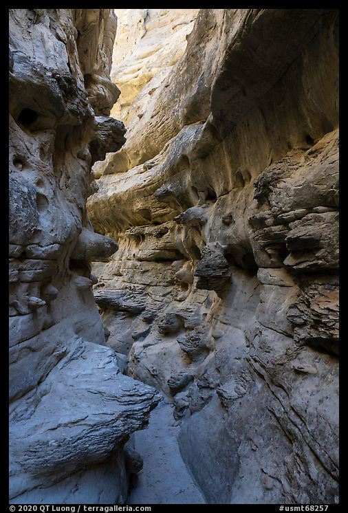 Twisted passages in Neat Coulee slot canyon. Upper Missouri River Breaks National Monument, Montana, USA