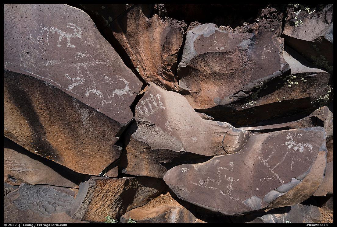 Petroglyphs etched into black basalt rock, Nampaweap. Parashant National Monument, Arizona, USA