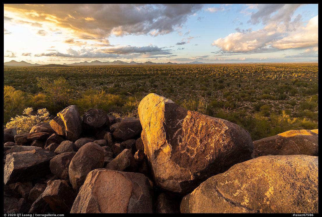 Hohokam petroglyphs on Cocoraque Butte boulders at sunset. Ironwood Forest National Monument, Arizona, USA