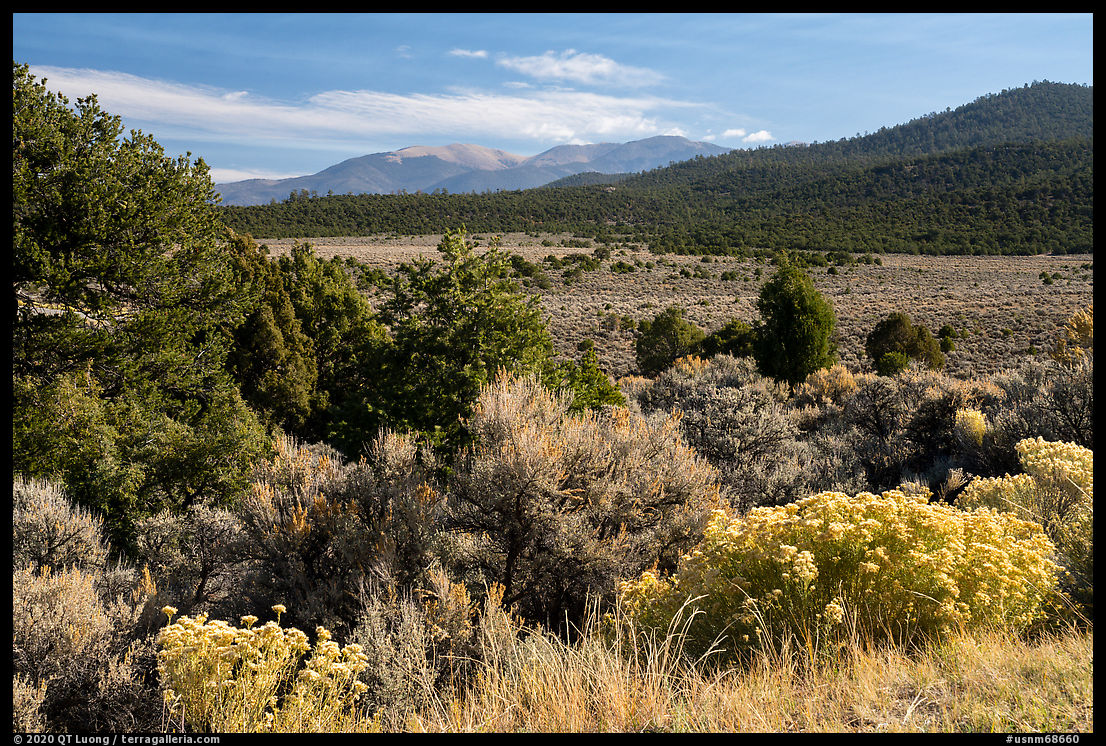 Sage, Juniper and Guadalupe Mountain. Rio Grande Del Norte National Monument, New Mexico, USA