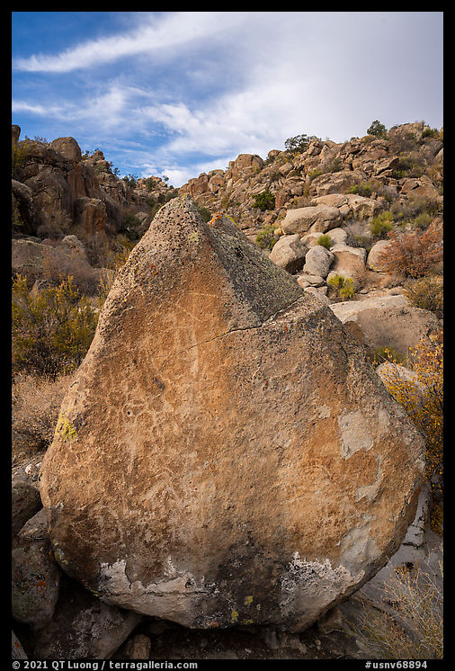 Pointed rock with petroglyphs, Shooting Gallery. Basin And Range National Monument, Nevada, USA
