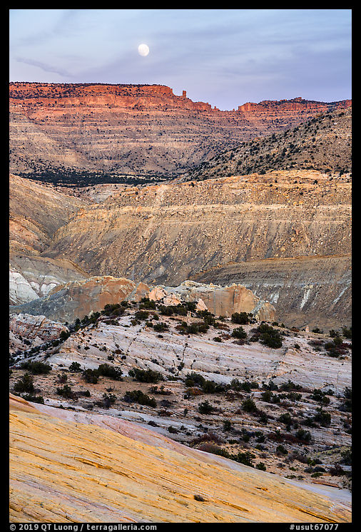 Moon rising over colorful rocks of the Cockscomb. Grand Staircase Escalante National Monument, Utah, USA