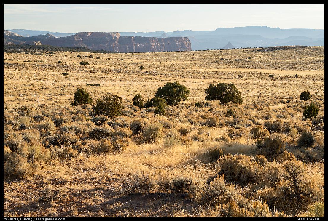 Hatch Point Plateau. Bears Ears National Monument, Utah, USA