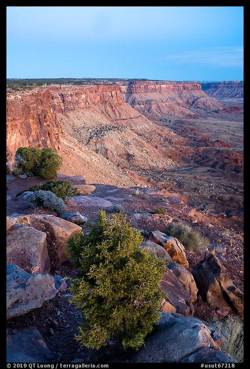 Canyon Rims, dusk. Bears Ears National Monument, Utah, USA