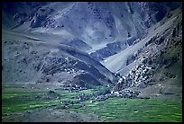 Cultivated fields, village, gompa, and barren mountains, Zanskar, Jammu and Kashmir. India ( color)