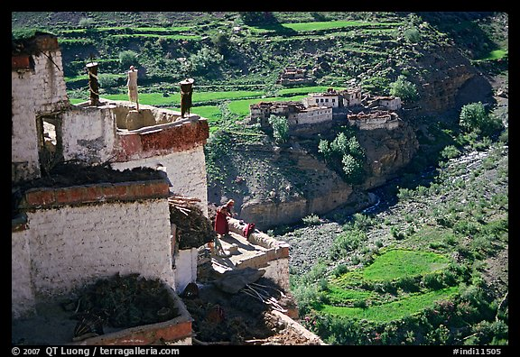 Gompa with monk on balcony overlooking verdant village, Zanskar, Jammu and Kashmir. India