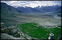 Chortens overlooking cultivations in the Padum plain, Zanskar, Jammu and Kashmir. India ( color)