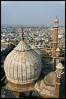 Dome of Jama Masjid mosque and Old Delhi rooftops. New Delhi, India ( color)