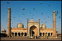 Jama Masjid with pigeons flying. New Delhi, India